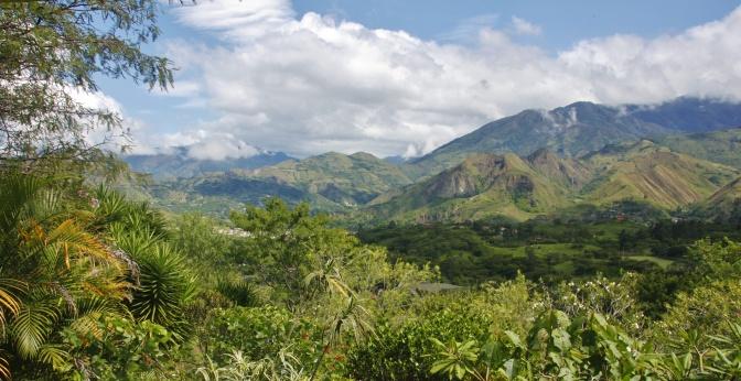 The Road to Ecuador